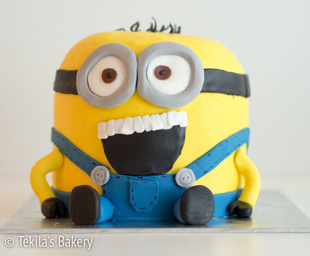 mini minion kakku-5