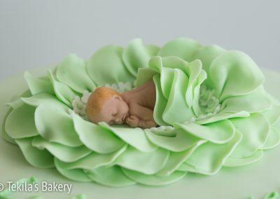 mintunvihrea vauvakoriste ja kakku-3