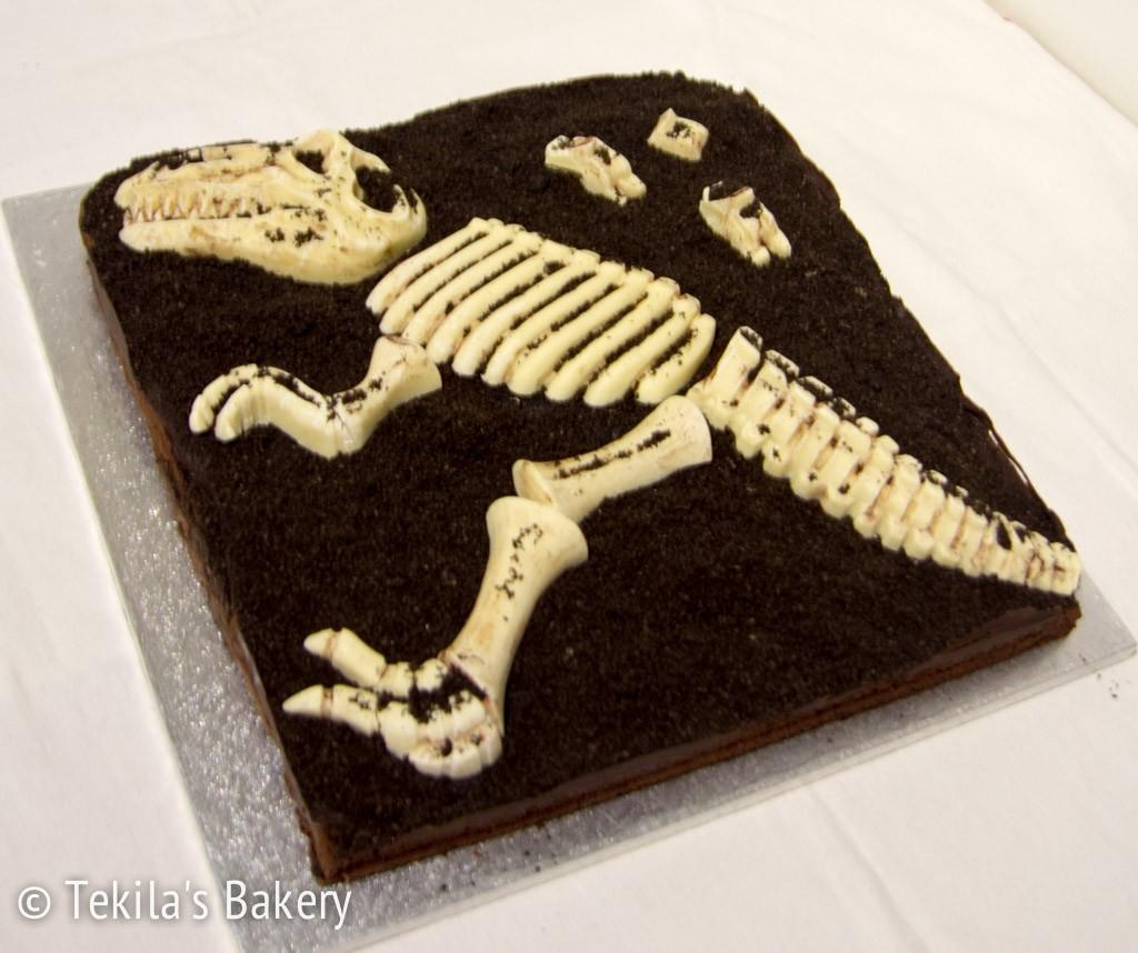 dinosaurus fossiili kakku-1