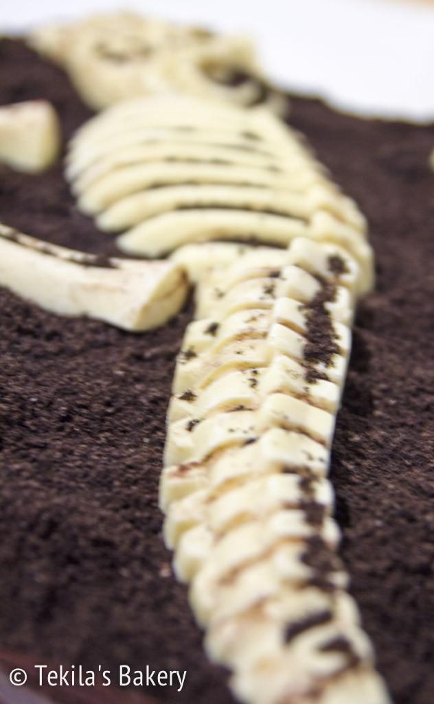 dinosaurus fossiili kakku-3-2