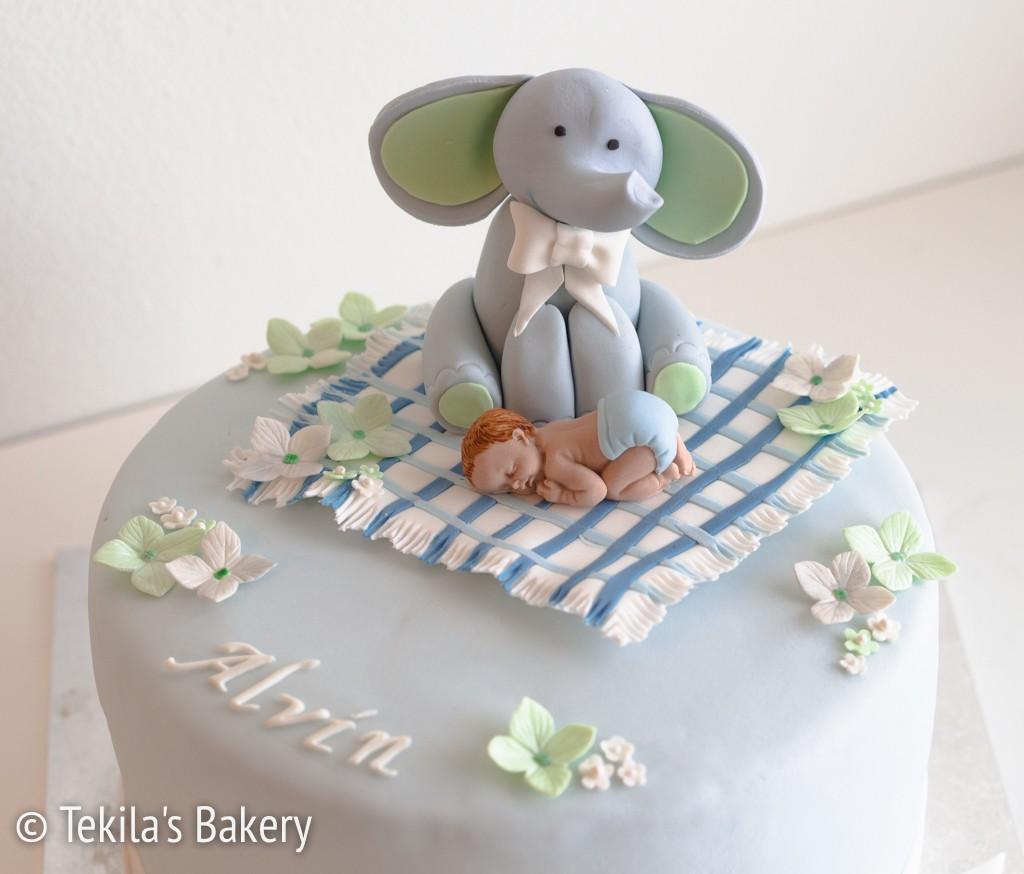 elefantti kakku-3