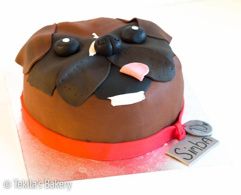 boxer kakku-1