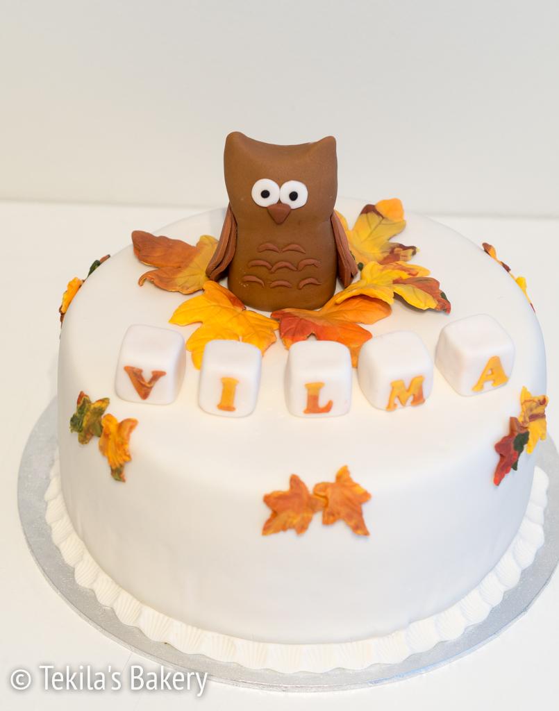 Pöllö kakun koristeena